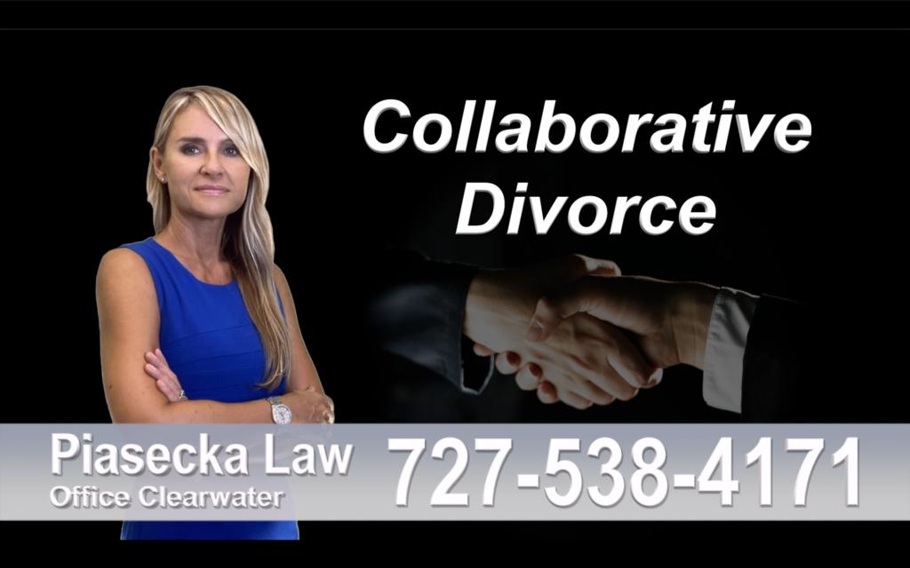 Divorce Immigration Tampa collaborative-divorce-attorney-agnieszka-piasecka-prawnik-rozwodowy-rozwod-adwokat-rozwodowy-najlepszy-best-collaborative-divorce-attorney-family-law