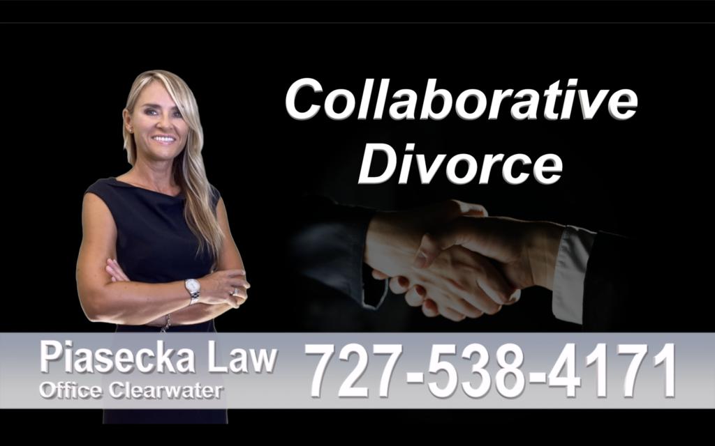 Divorce Immigration Tampa collaborative-divorce-attorney-agnieszka-piasecka-prawnik-rozwodowy-rozwod-adwokat-rozwodowy-najlepszy-best-collaborative-divorce-lawyer